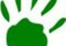 Zielona łapka